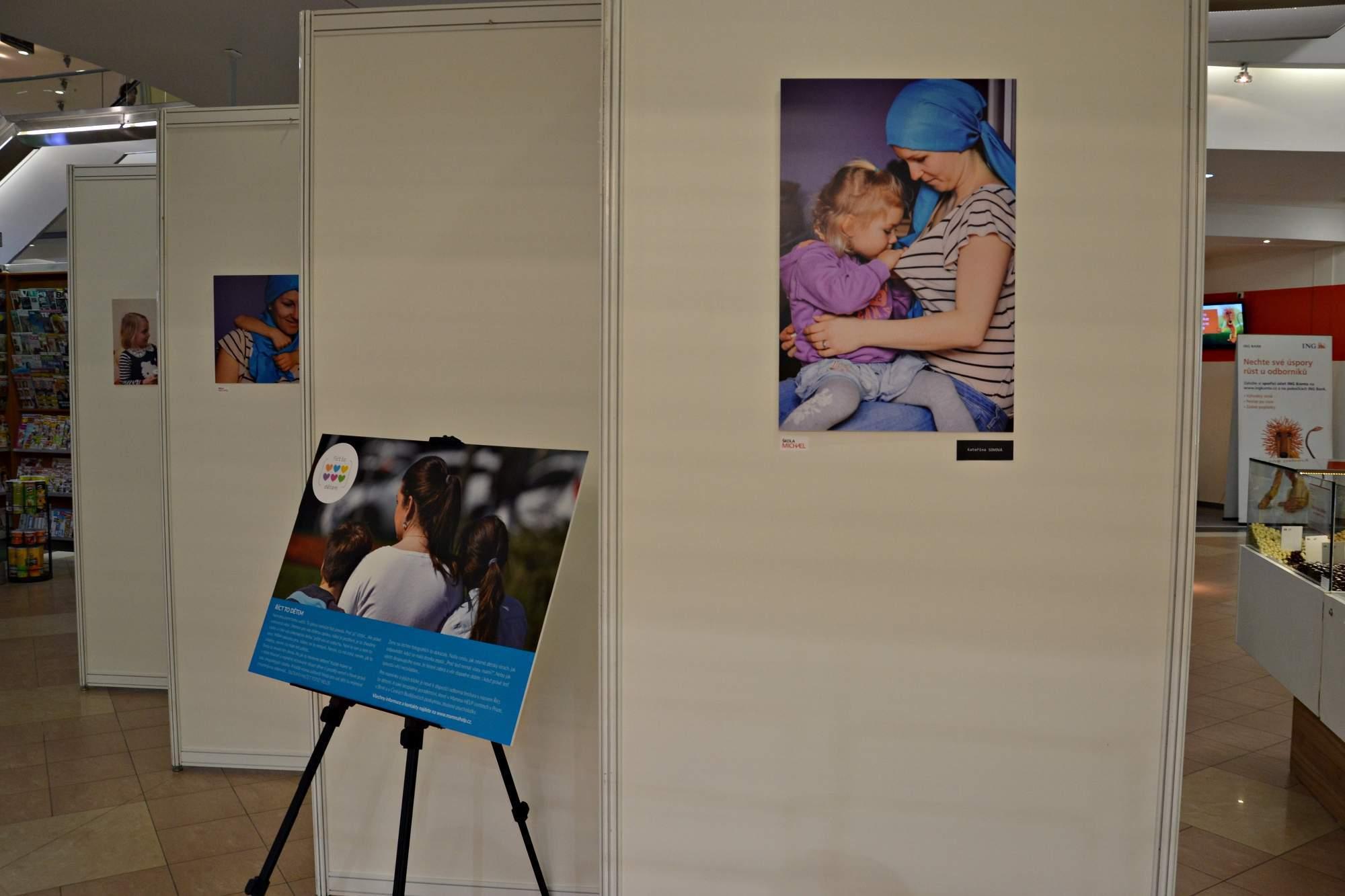 Výstava nese název Říct to dětem a je nainstalována v obchodním centru Velký Špalíček.