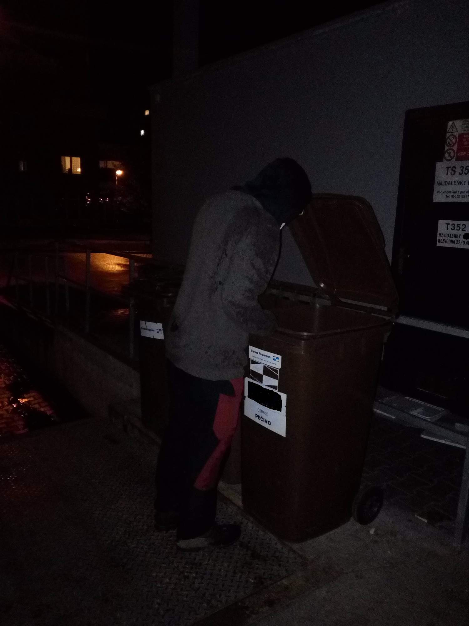 Některé popelnice se každý den plní až po okraj.