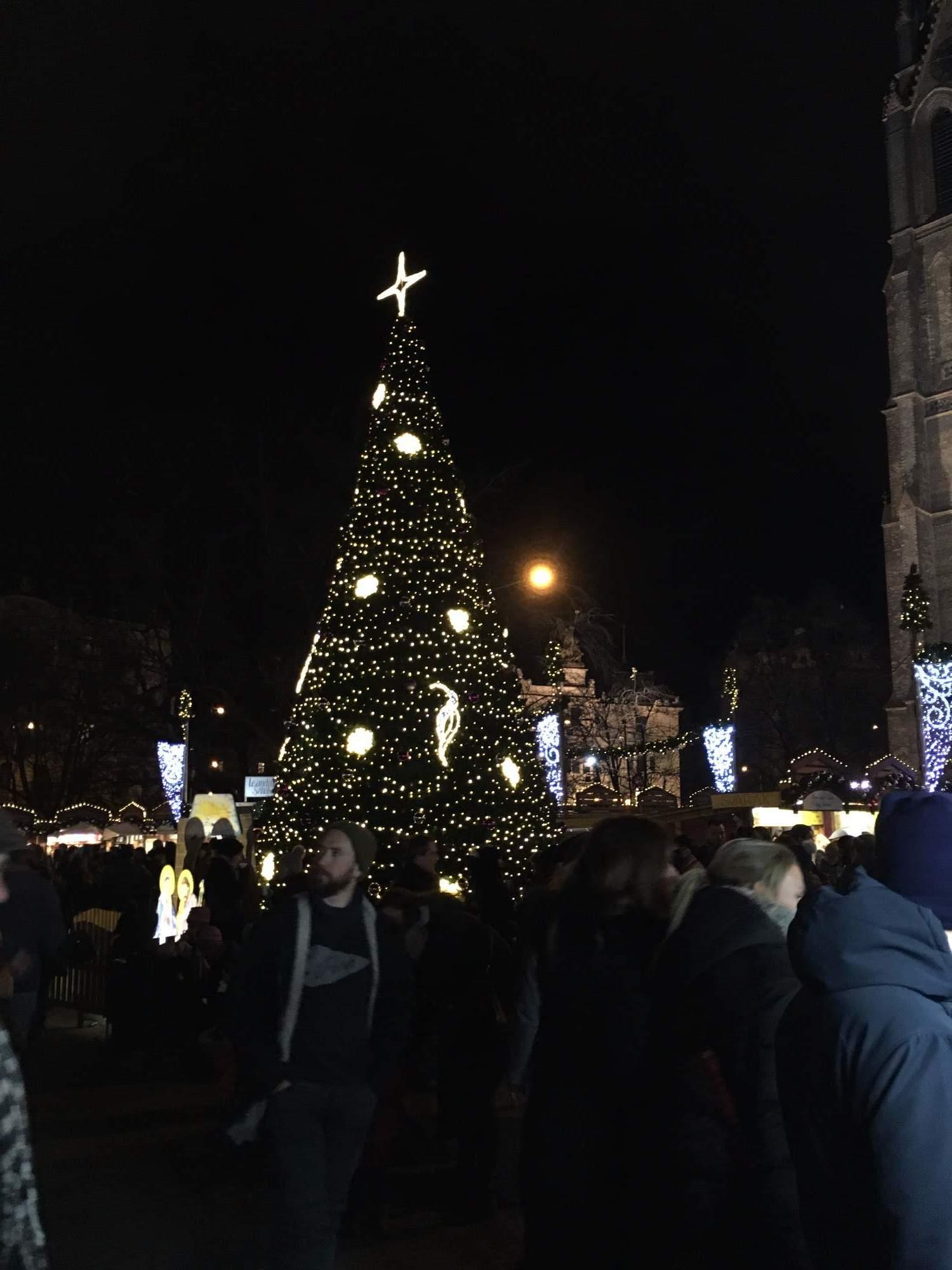 Stromeček na náměstí Míru (Lenka Čechová)