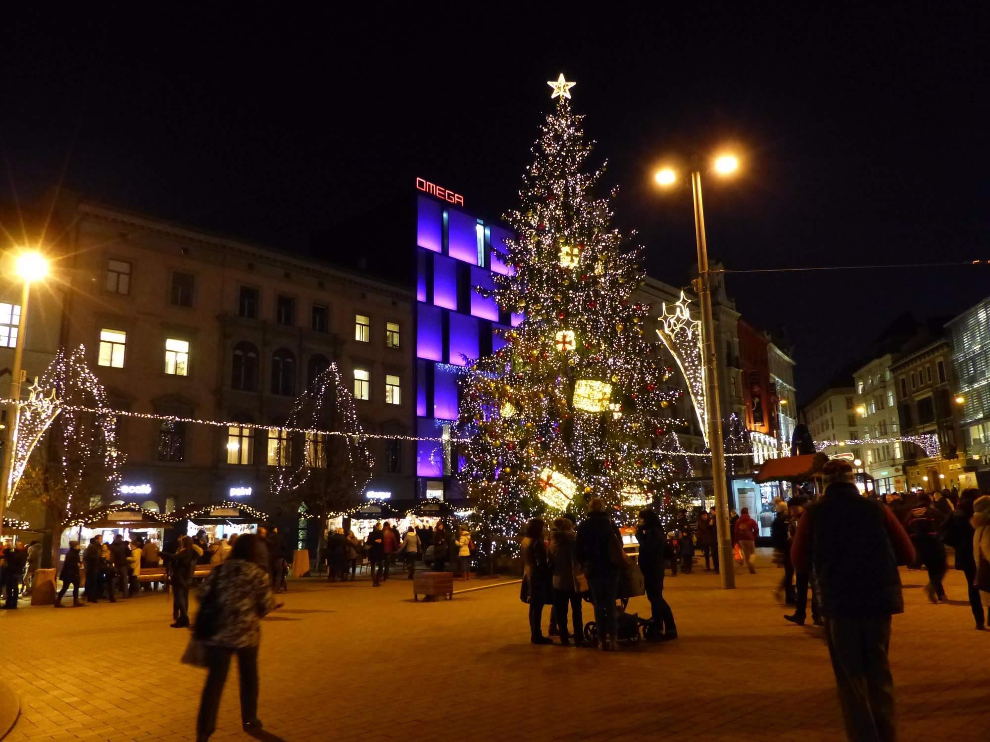 Strom na brněnském náměstí Svobody (Andrea Šebelová)